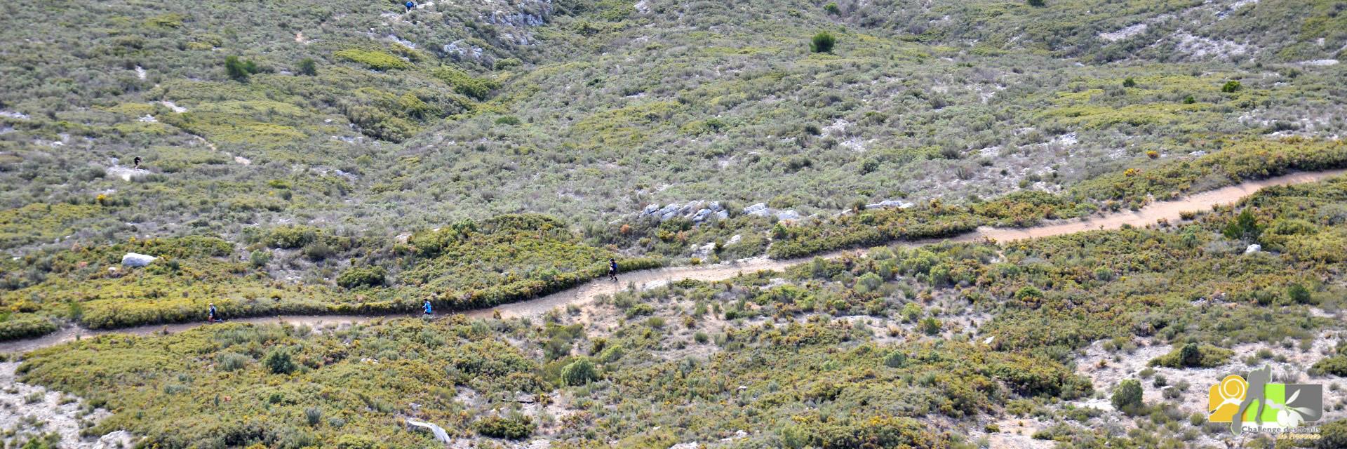 La vidéo du Trail de la Galinette 2016