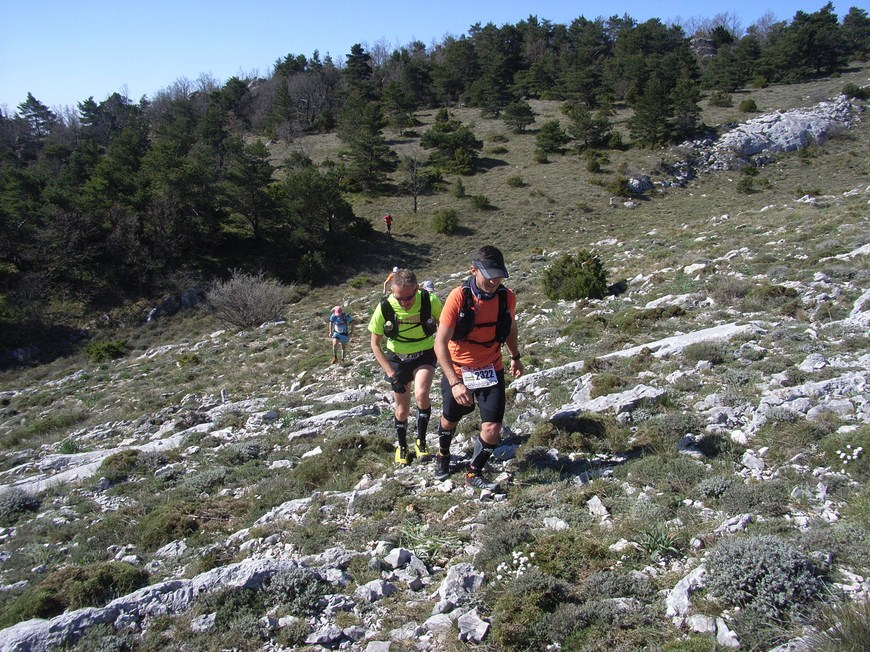 Signes Trail